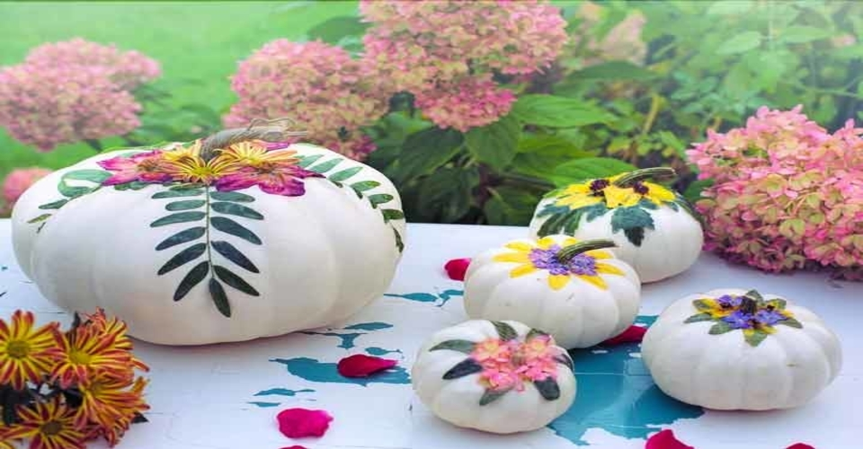 Floral pumpkins as Thanksgiving decorations