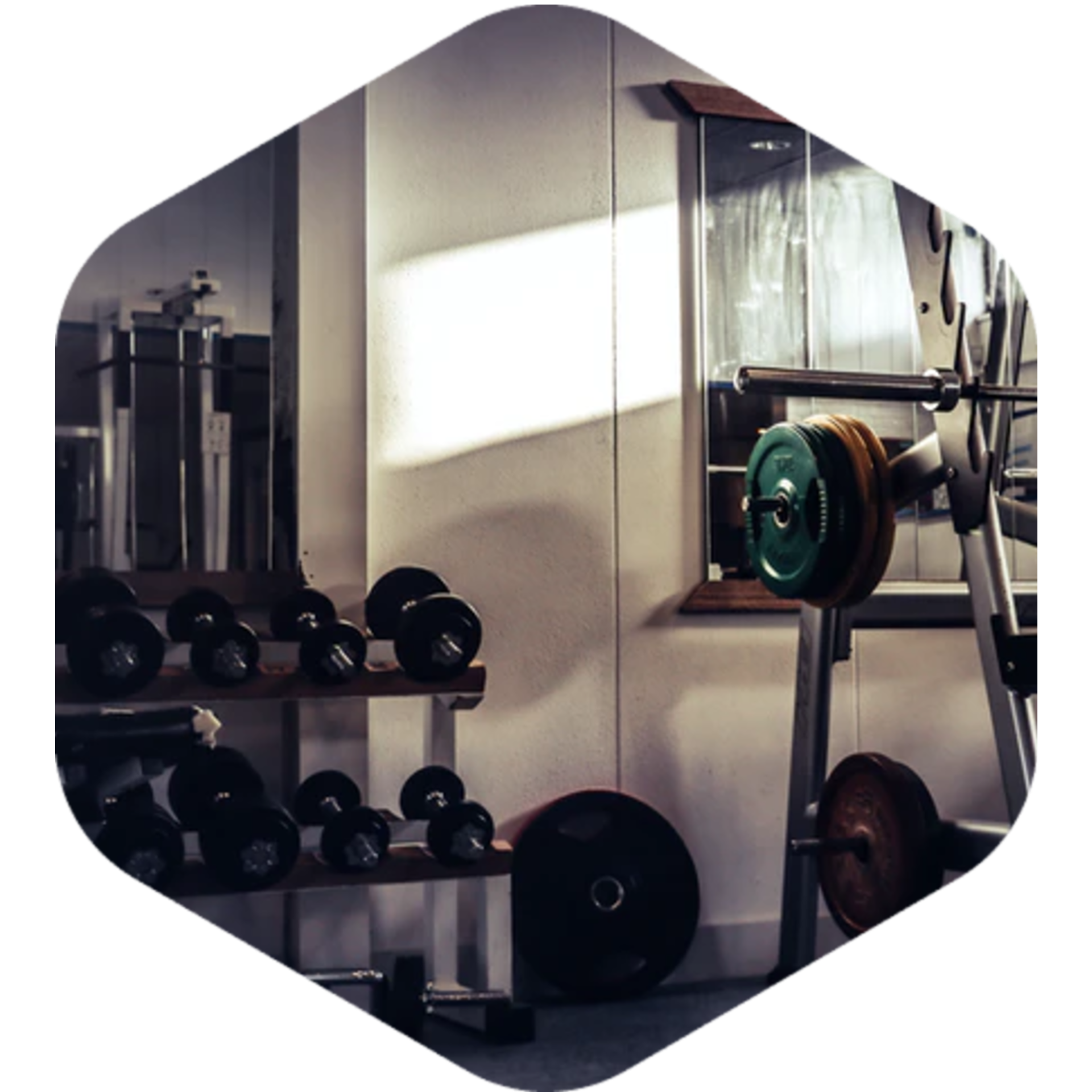 BigCommerce POS For Your Fitness Store