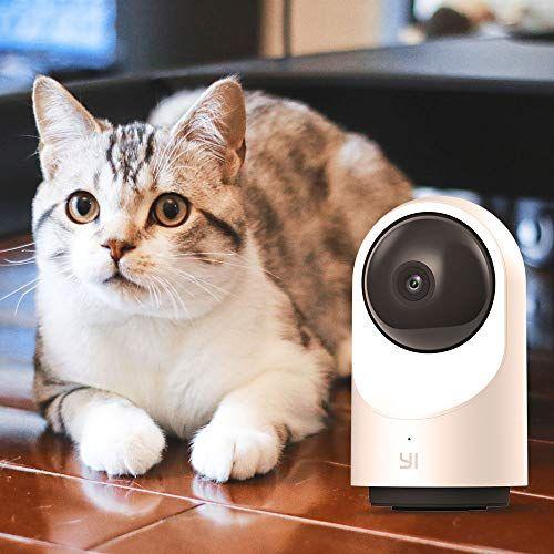 Smart Dome Security Camera X